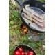 Petromax Feuerpfanne fp25 mit Stiel